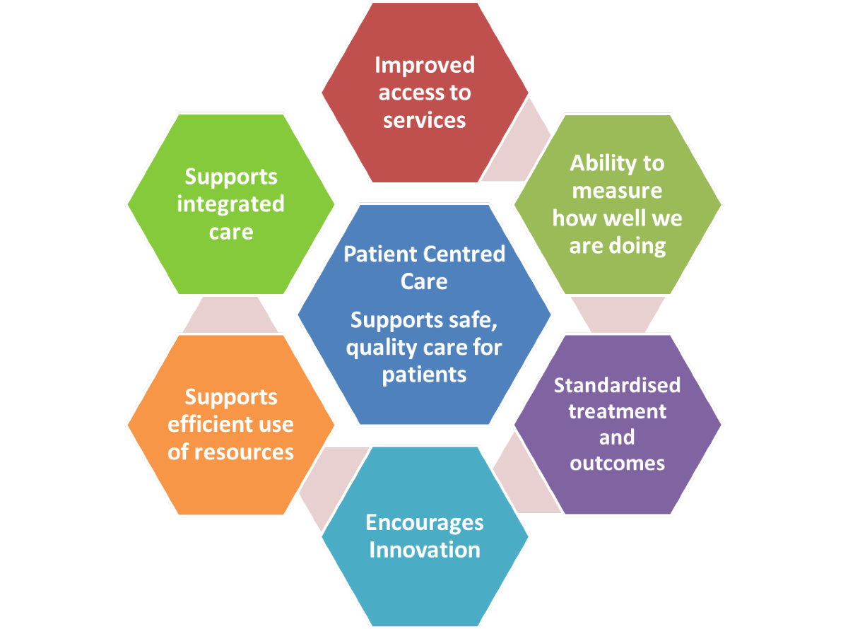 model_of_care_principles.png